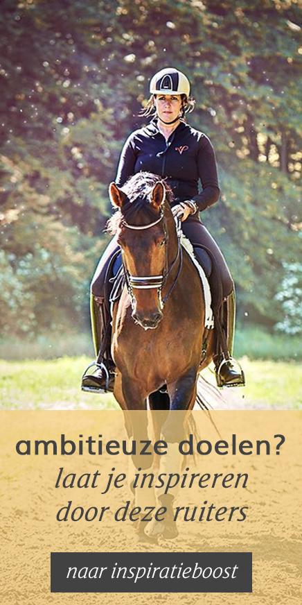 Ruiter met paard. Inspiratie voor de ruiter om je ambitieuze doelen te behalen.