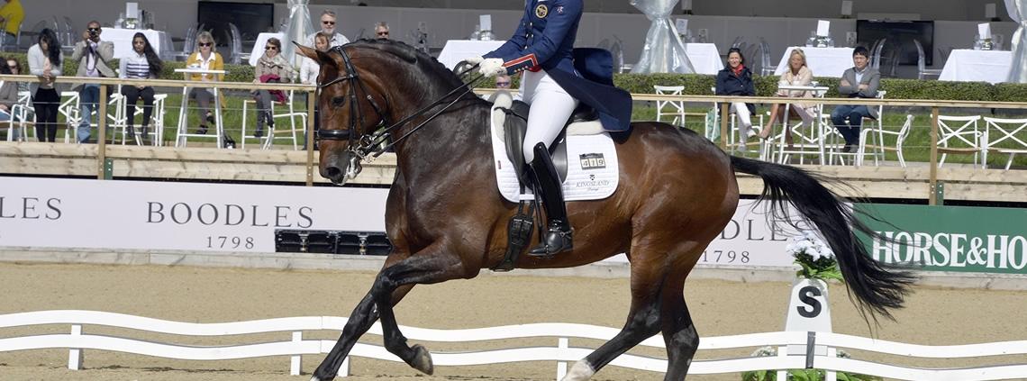dressuur jaloezie wedstrijd wedstrijdsport mentaal paardrijden advies tips