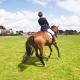 dressuur asymmetrie asymmetrisch paard rijtips rijden