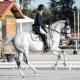 impuls dressuur paardrijden tips rijtechnisch