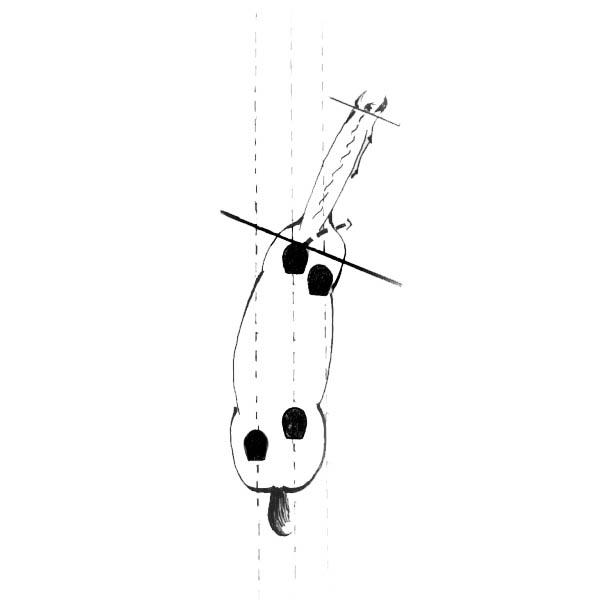 schoudervoor schouderbinnenwaarts